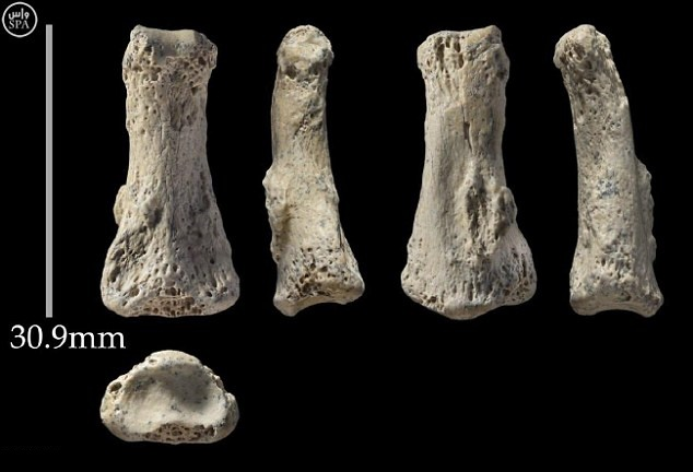Human bone believed to be 90,000 years old found in Saudi Arabia