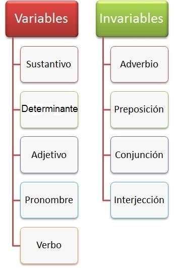Resultado de imagen de actividades palabras invariables