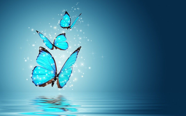 Butterfly backgrounds 1