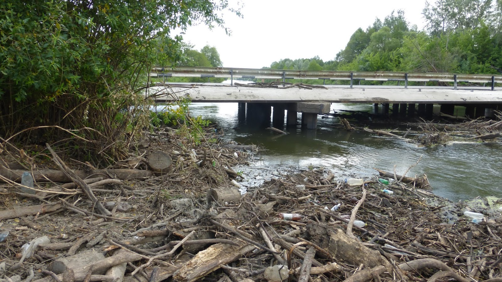 pigeon river pollution Job layoffs at issue in cleanup of pigeon river along north carolina-tennessee border since 1908, the mill has dumped its waste into the pigeon river, which flows dark, toxic, and malodorous down.