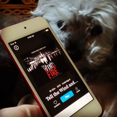 Murchie sniffs a white iPod held in the forefront of the shot. The iPod's screen features the cover of Tell the Wind and Fire, which consists of a nighttime shot of New York with the Brooklyn Bridge in clear view. The title appears in red and white lettering in the water under the bridge.
