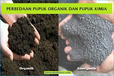 Cara Membedaka Antara Pupuk Organik (Alami) Dengan Pupuk Anorganik (Kimia)