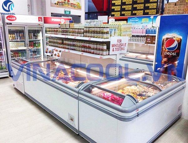 Tủ trưng bày thực phẩm đông lạnh Vinacool SWD -2500YC
