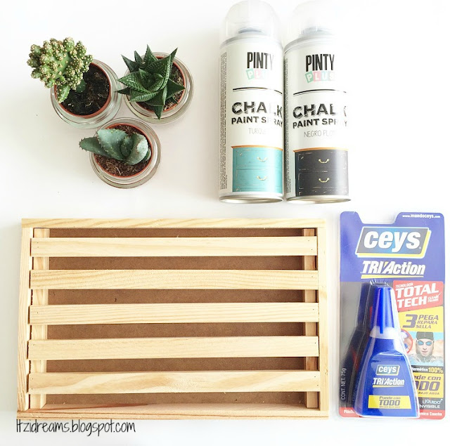 DIY Decorar con Plantas en 3 Pasos, DIY HOME DECO, DIY HANDBOX, DIY Cactus, Sprays Novasol Chalk Paint