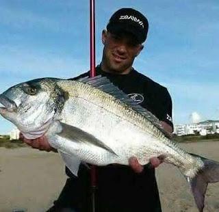 صيد سمك الدنيس بالسنارة