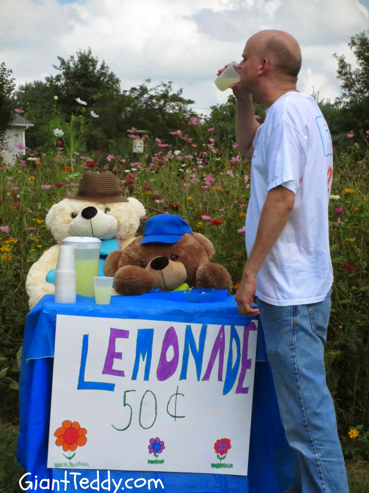Giant Teddy brand lemonade recipe