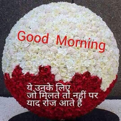 red & white flowers with good morning text on it whatsapp