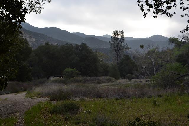 Cienaga Camp