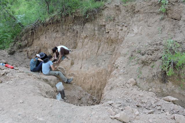 Στρωματογραφία απολιθωμάτων βοήθεια επικεφαλίδας τοποθεσίας γνωριμιών