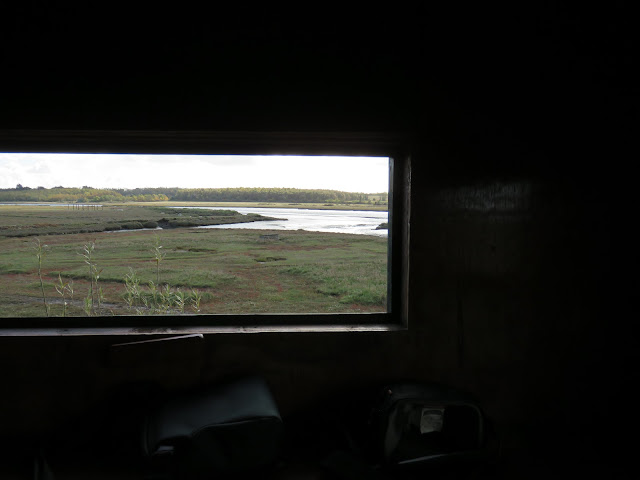 Rogerstown Estuary bird watching at North Hide