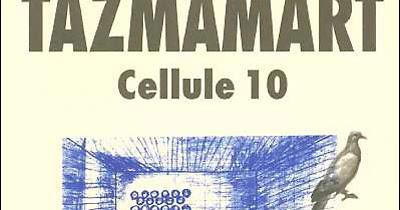 TAZMAMART 10.PDF TÉLÉCHARGER CELLULE