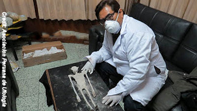 Alleged Alien Remains in Nazca