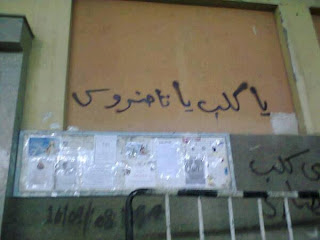 Tawadros the dog , a graffiti seen frequently in Cairo