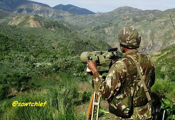 الجيش يوقف 4 عناصر  دعم للجماعات الإرهابية