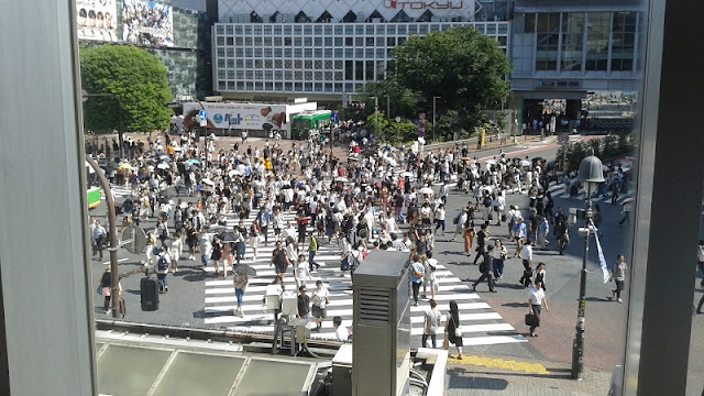 Cruce Shibuya, dónde verlo