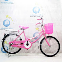 20 evergreen princess city bike