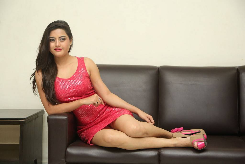 Telugu Girl Shipra Gaur Stills At Film Success Meet In Pink Dress