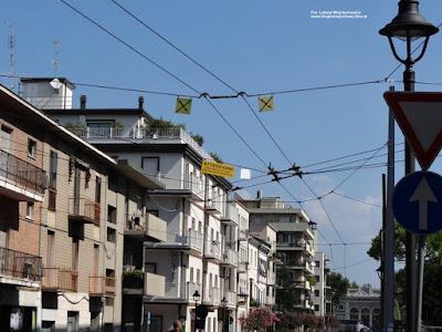 Rimini, sieć trolejbusowa