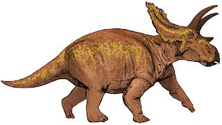 Anchiceratops Özellikleri