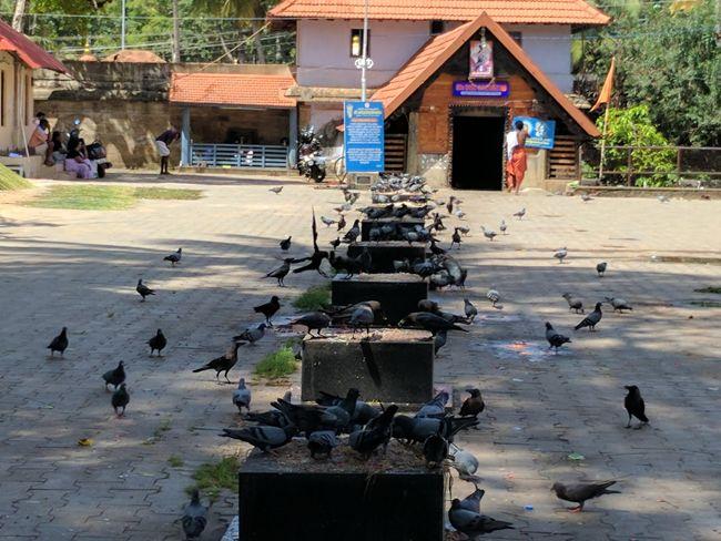Sri Parasurama Temple Premises