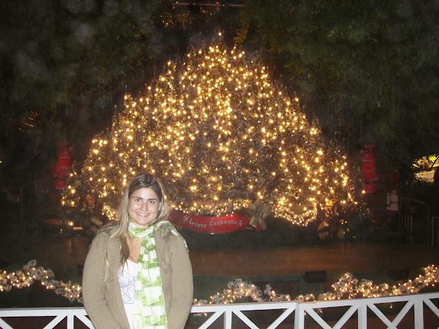 Árvore Cantante no Natal Luz, Gramado.