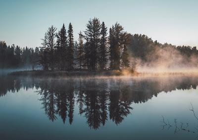 Lago con niebla y bosque de fondo