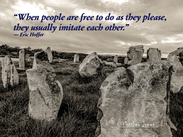 'When people are free to do as they please, they usually imitate each other' - Eric Hoffer