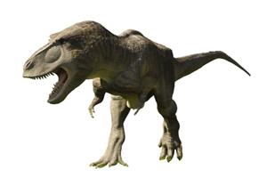 Tiranosaurio rex, uno de los dinosaurios más peligrosos