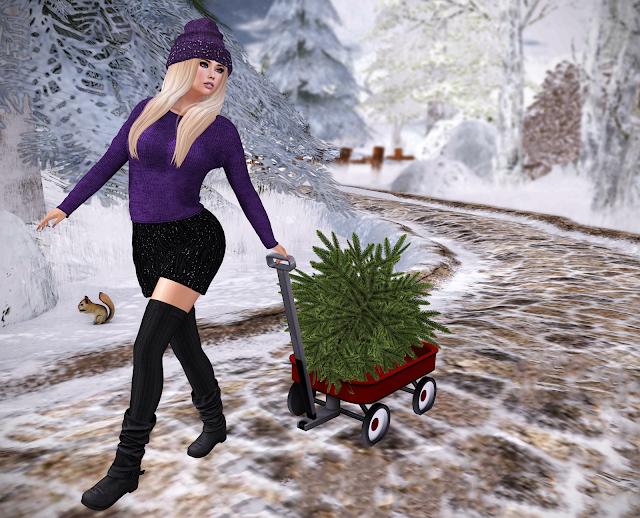 I Got The Christmas Tree