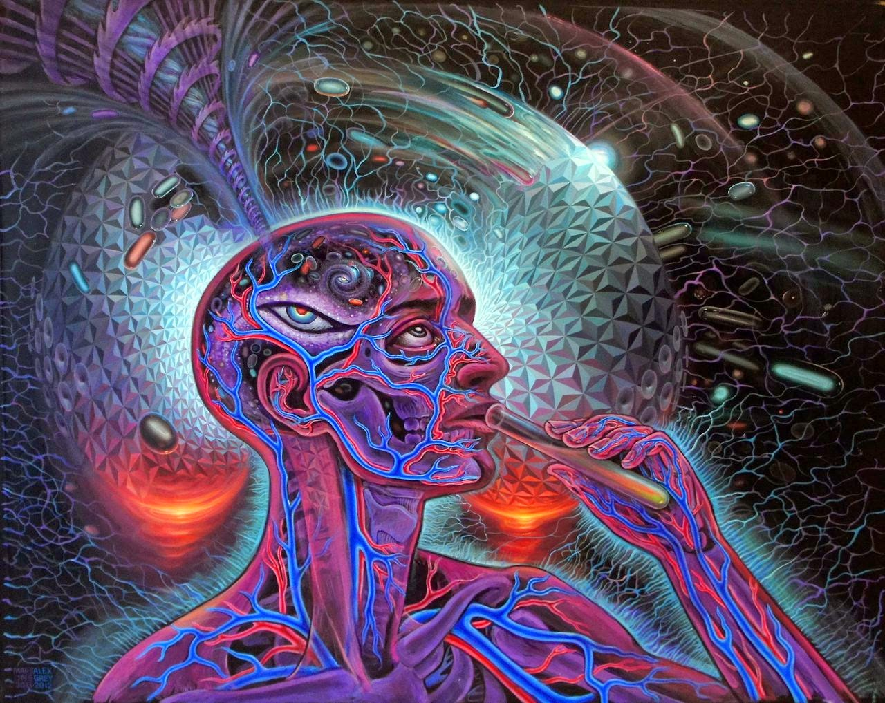 Augureye Express: DMT and the Persistent Illusion