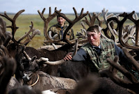 Nenets herders are seen with reindeer at a camping ground in far-northern Russia on Aug. 2, 2015. (Credit: Sergei Karpukhin/Reuters) Click to Enlarge.