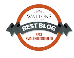 Best Smallholding blog