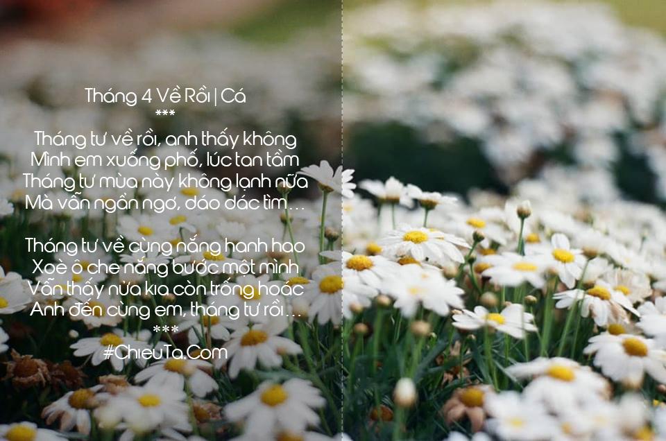 Thơ Tháng Tư - Chùm Thơ Tình Tháng 4 Về Cô Gái Tháng Tư Cô Đơn