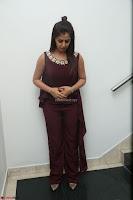 Nikki Galrani in a Brown Shining Sleeveless Gown at Nakshatram music launch ~  Exclusive 106.JPG