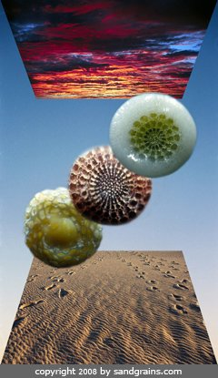 Beautiful Pictures Show What Sand Magnified Up To 300x Looks Like