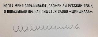 шиншилла русским курсивом
