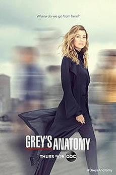 Baixar Greys Anatomy 16ª Temporada