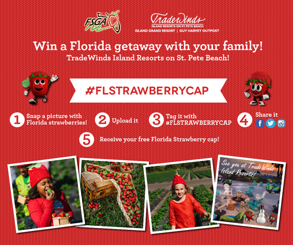 Florida Strawberry Cap Contest