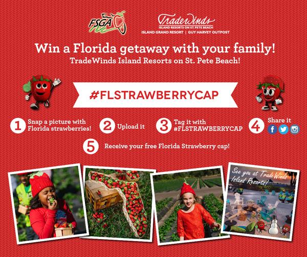 Florida Strawberry Cap Contest