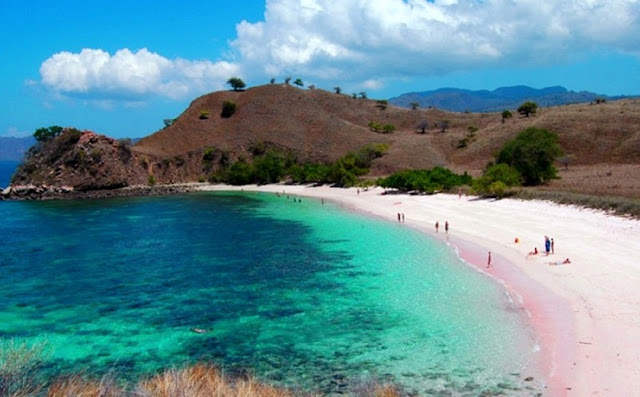 got the scream from the color of the beach sand BestplacetovisitinIndonesia; Pink Beach (Tangsi Beach), a Remote exactly Stunning Beach inwards East of Lombok