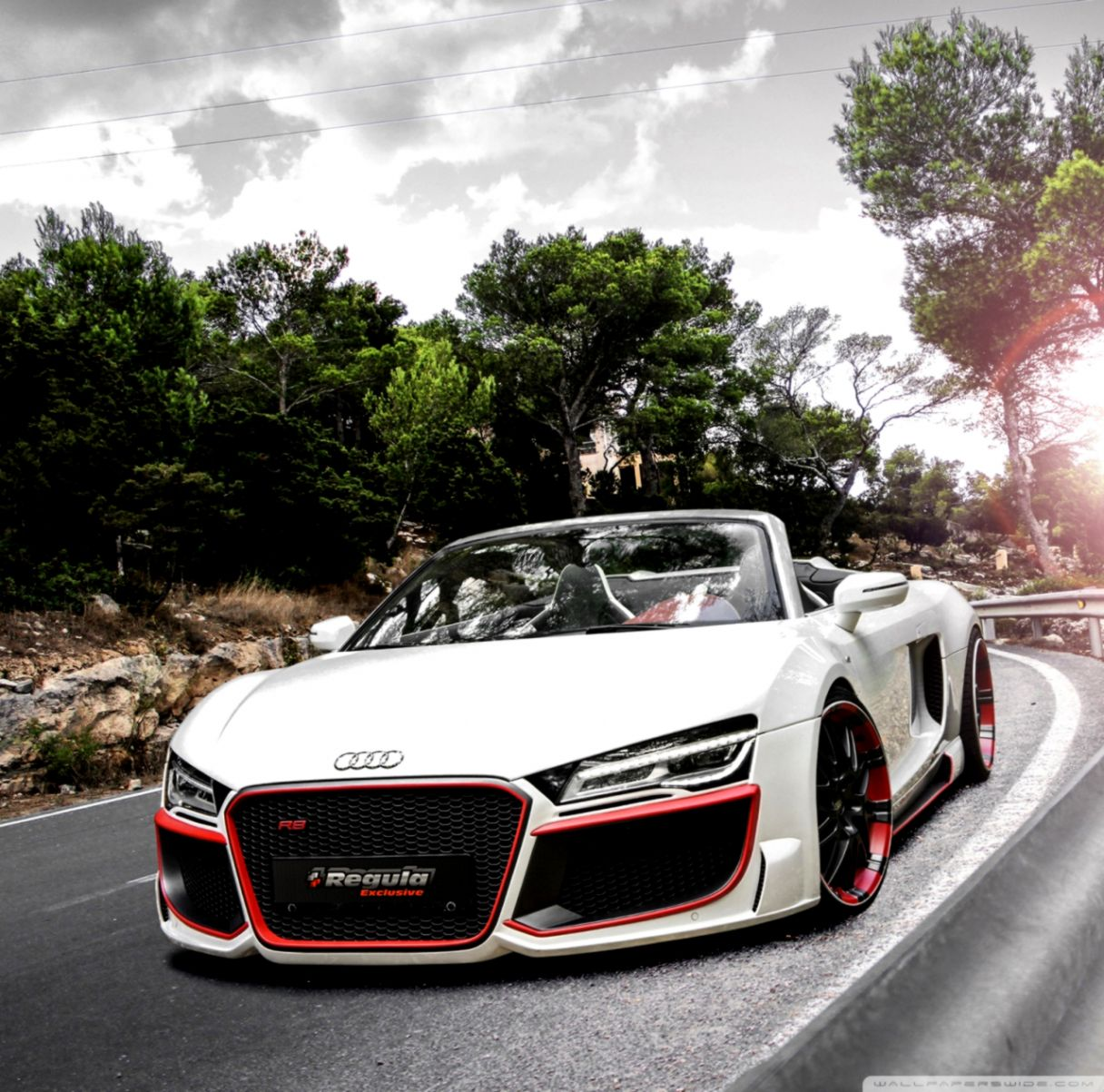 Audi Wallpaper: Audi R8 V10 Car 5 HD Wide Wallpaper For Widescreen (95