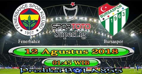 Prediksi Bola855 Fenerbahce vs Bursaspor 12 Agustus 2018