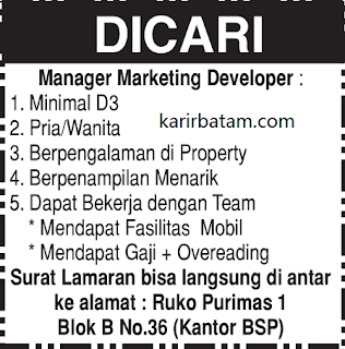 Lowongan Kerja Manager Marketing Developer