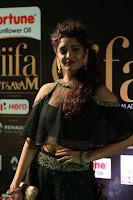 Ritika Singh in a Ethnic Deep Neck Dark Green Choli Ghagra at IIFA Utsavam Awards March 2017 ~ 040.JPG