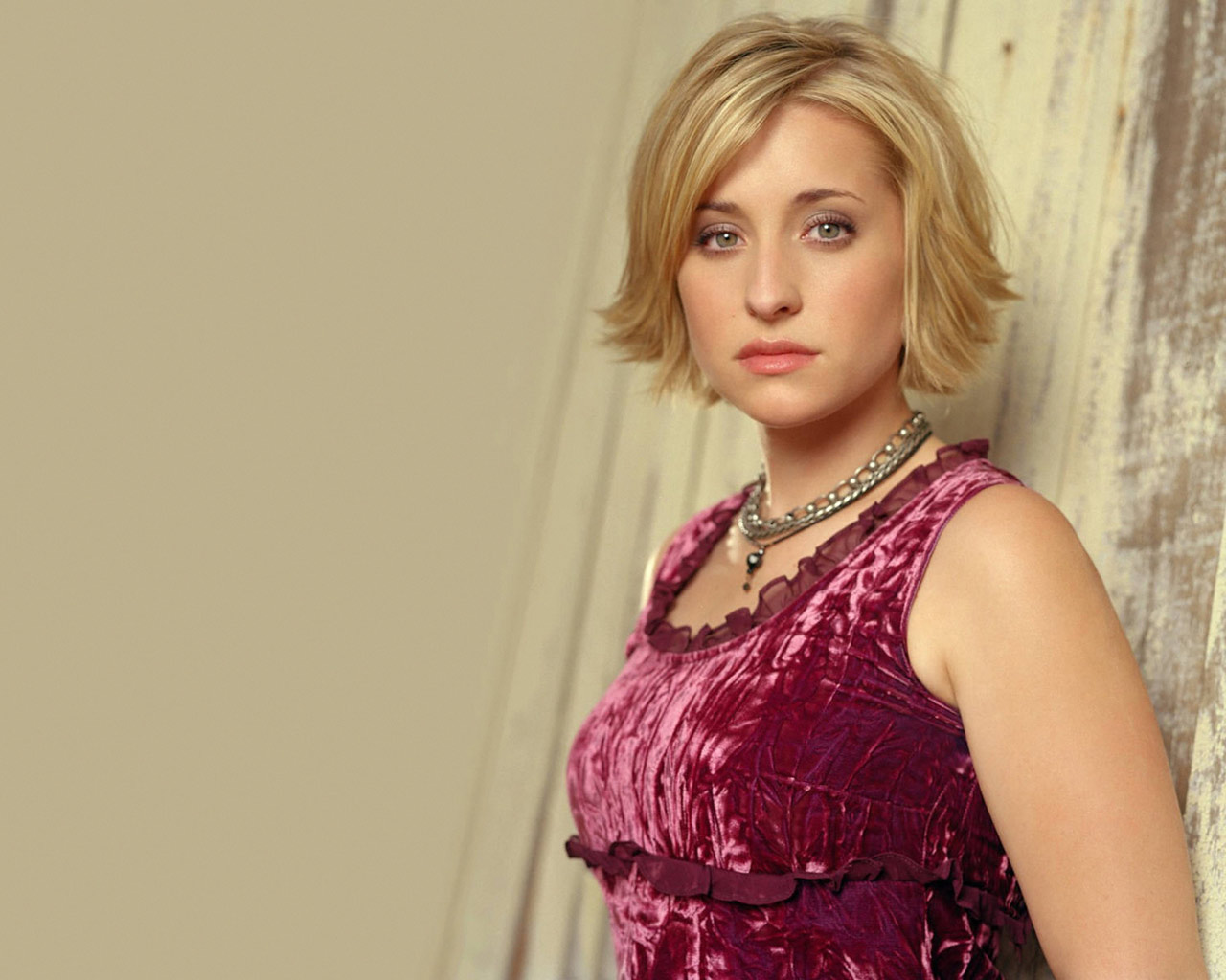 The Information Centre Allison Mack Wallpapers