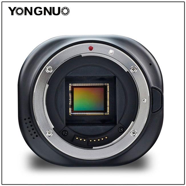 Yongnuo YN43, вид спереди
