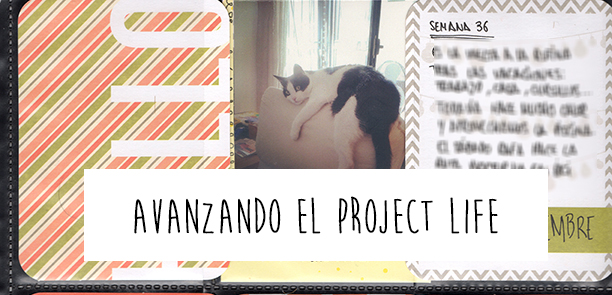 Project life composición ideas journaling