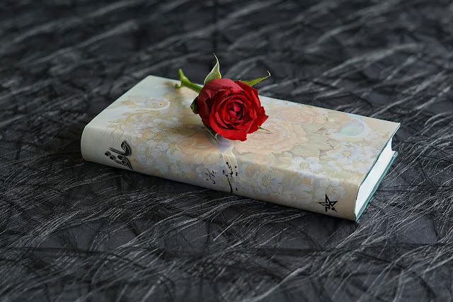 Puisi Cinta Buat Kekasih Pacar dan Orang Tersayang Romantis