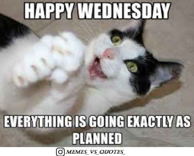 Wednesday - Exectly as planed