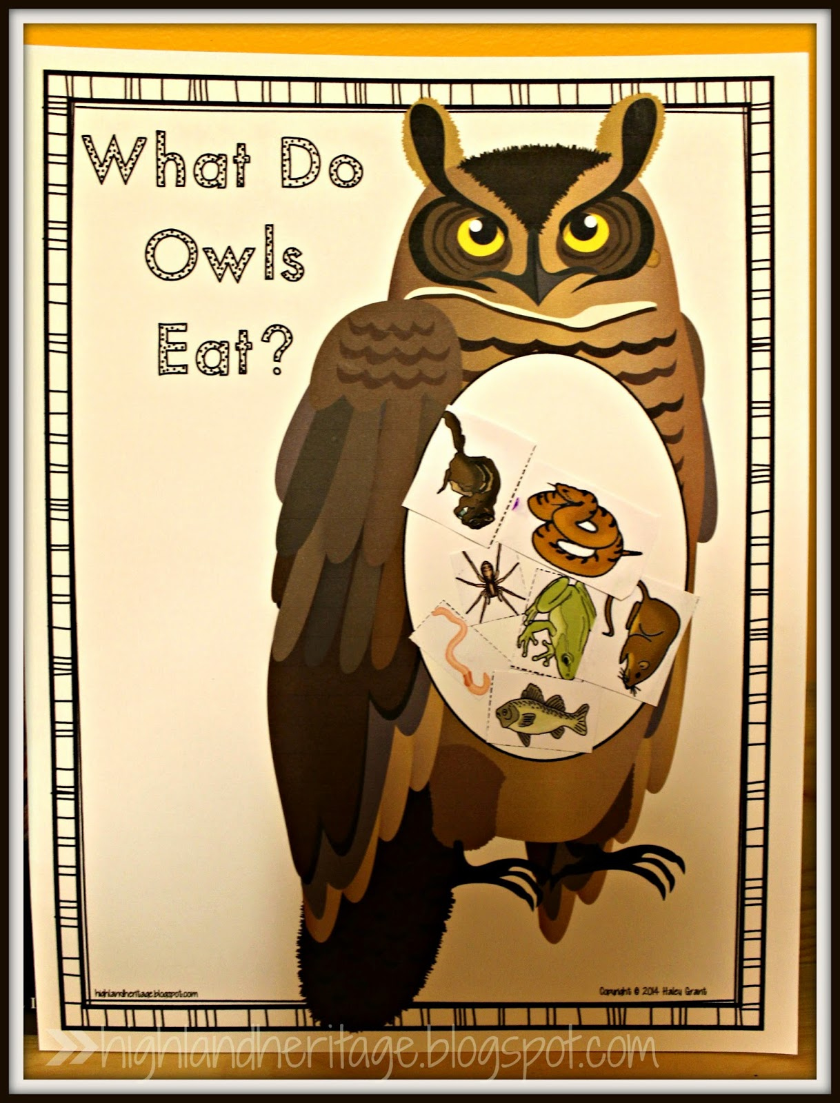 Highland Heritage Homeschool Owl Week With Freebies